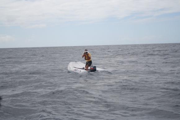 Paparazzi fotograaf op zee!